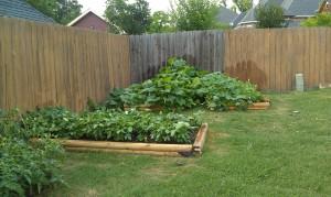 Garden - May 4th